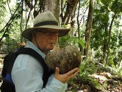 vr, 04/06/2010 - 23:45 - 04. Dorstlessen met een kokosnoot