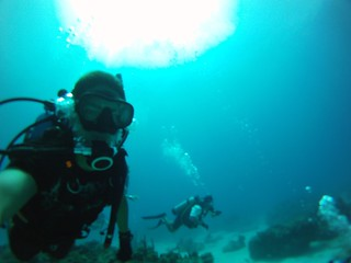 Bimini Diving   by miamism