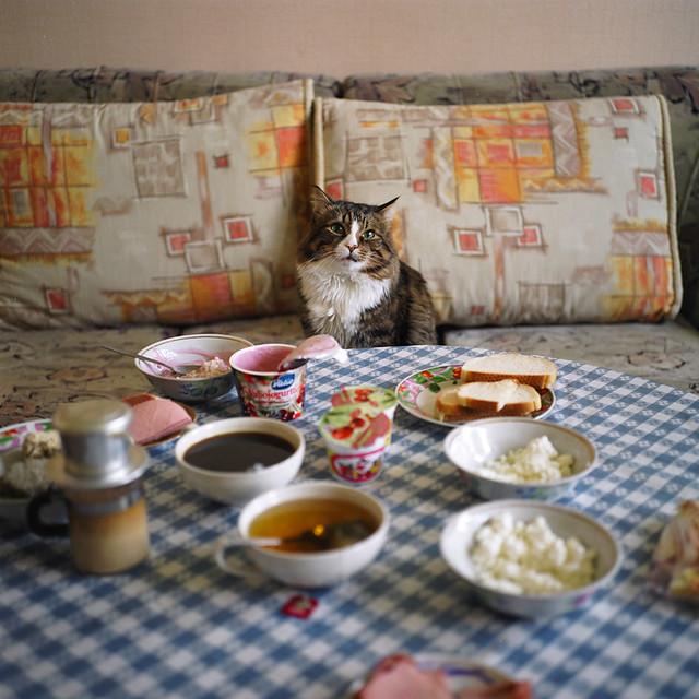 Ready for breakfast