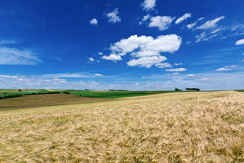 blue summer sky yellow clouds landscape view horizon grain wideangle luxembourg luxemburg canon1022mm graan robchristiaans