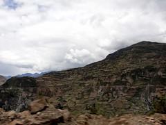 vr, 04/12/2009 - 18:50 - 83_ landschap is een lappendeken-1