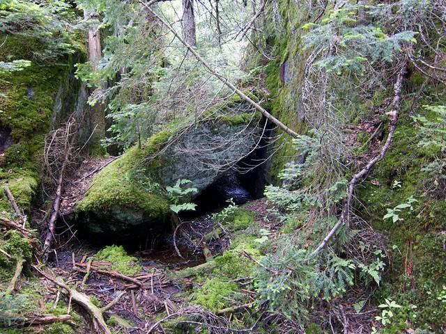 2:51:52 (81%): vermont hiking greenmountains mthunger whiterocktrail mtwhiterock
