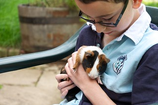 A boy and his guinea pig | by Pewari