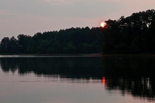 trees lake water sunrise georgia rocks lakejulieette