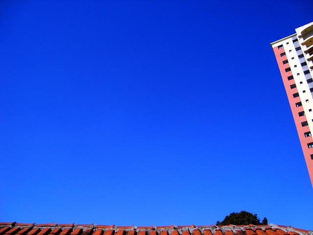 céu estupidamente azul