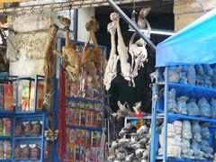 vr, 15/01/2010 - 22:12 - 36. Vreemd assortiment op Mercado de Hechiceria, de heksenmarkt