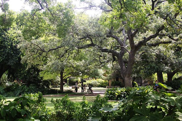 The Alamo - Garden