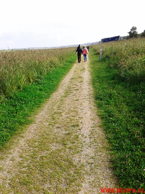 2015-10-09 Test wandeling 26 Km Oostvaarders  (26)