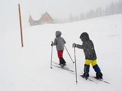 Mladí lyžníci mezi Pražskou a Kolínskou boudou