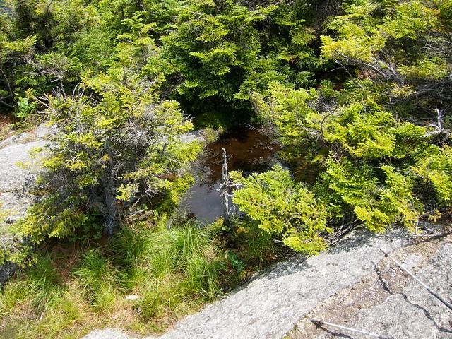 3:31:57 (99%): vermont hiking greenmountains mthunger whiterocktrail mtwhiterock