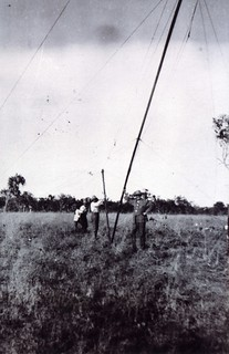 1921 Raising the wireless mast - KHS-2011-15-04-P2-D | by Kununurra Historical Society