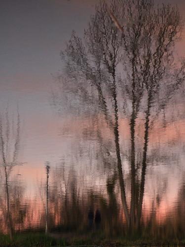 sunset couple davis northstarpond