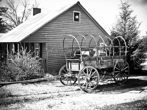 old field farm northcarolina carolina goldhill dcimageforge dannycollado