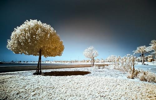 sunset apple sunrise photography landscapes travels nikon tripod 15 tokina infrared pro mm grip 77 hoya ballhead d300 r72 1116 macbook manfortto 293corei78gbram2011wacombahrainaradpark