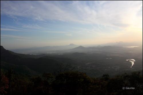 srilanka gaurika wasgamuwanationalpark gaurikaw