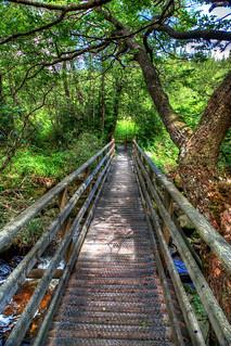 Bridge | by mmalaka