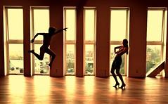 View from Netherlands Dance Theater of van goor y vel�squez