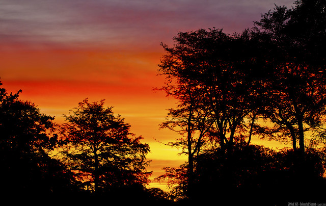 209 of 365 - Colourful Sunset