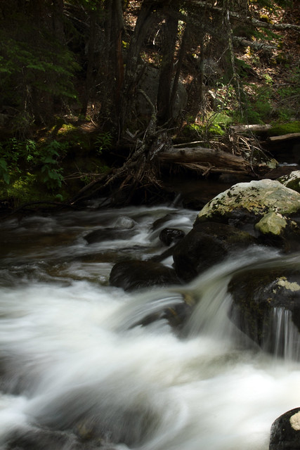 River near Crazy Woman Canyon Road - Bighorn National Forest, Wyoming