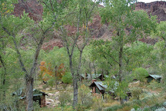 Grand Canyon: Phantom Ranch 0308