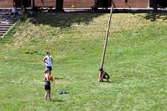 ASAP's Second Annual Fort Orange Olympics - Albany, NY - 2011, Jul - 54.jpg by sebastien.barre