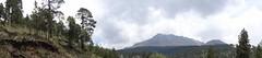 Panorama - Nevado de Toluca
