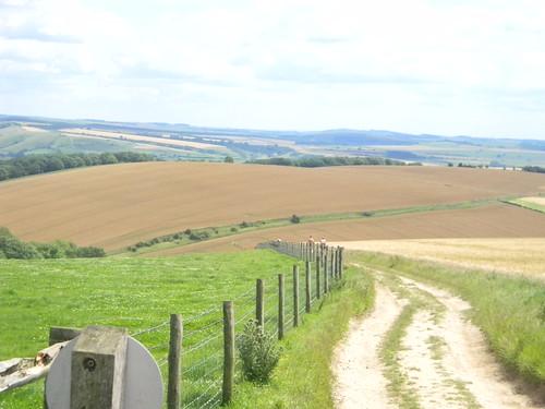SDW Amberley to Pulborough