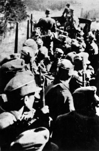 Fra den falne Ossi Buchbauers album, soldater på vei nordover