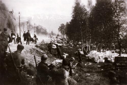 Allierte soldater under kampene om Narvik