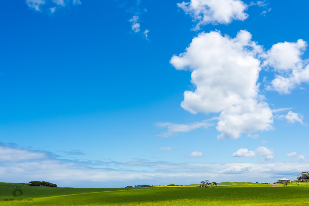 photographer of windows xp wallpaper