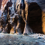 Glowing rocks, Narrows, Zion