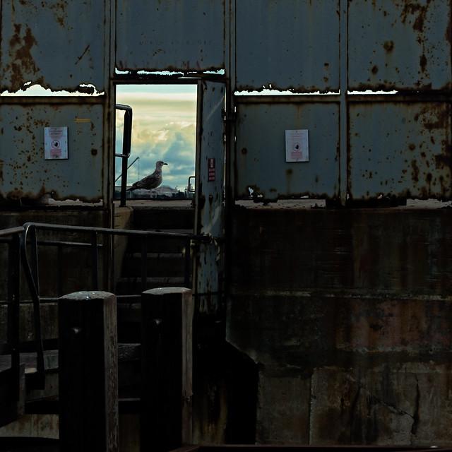 Derrière la porte 04
