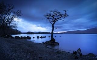 Milarrochy   by ShinyPhotoScotland