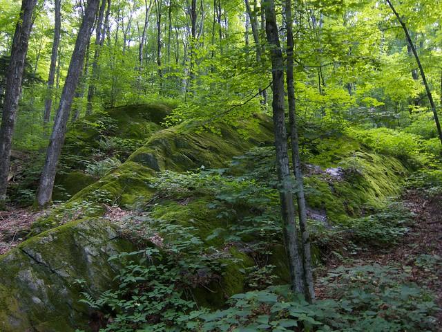 0:04:41 (2%): vermont hiking greenmountains mthunger waterburytrail mtwhiterock