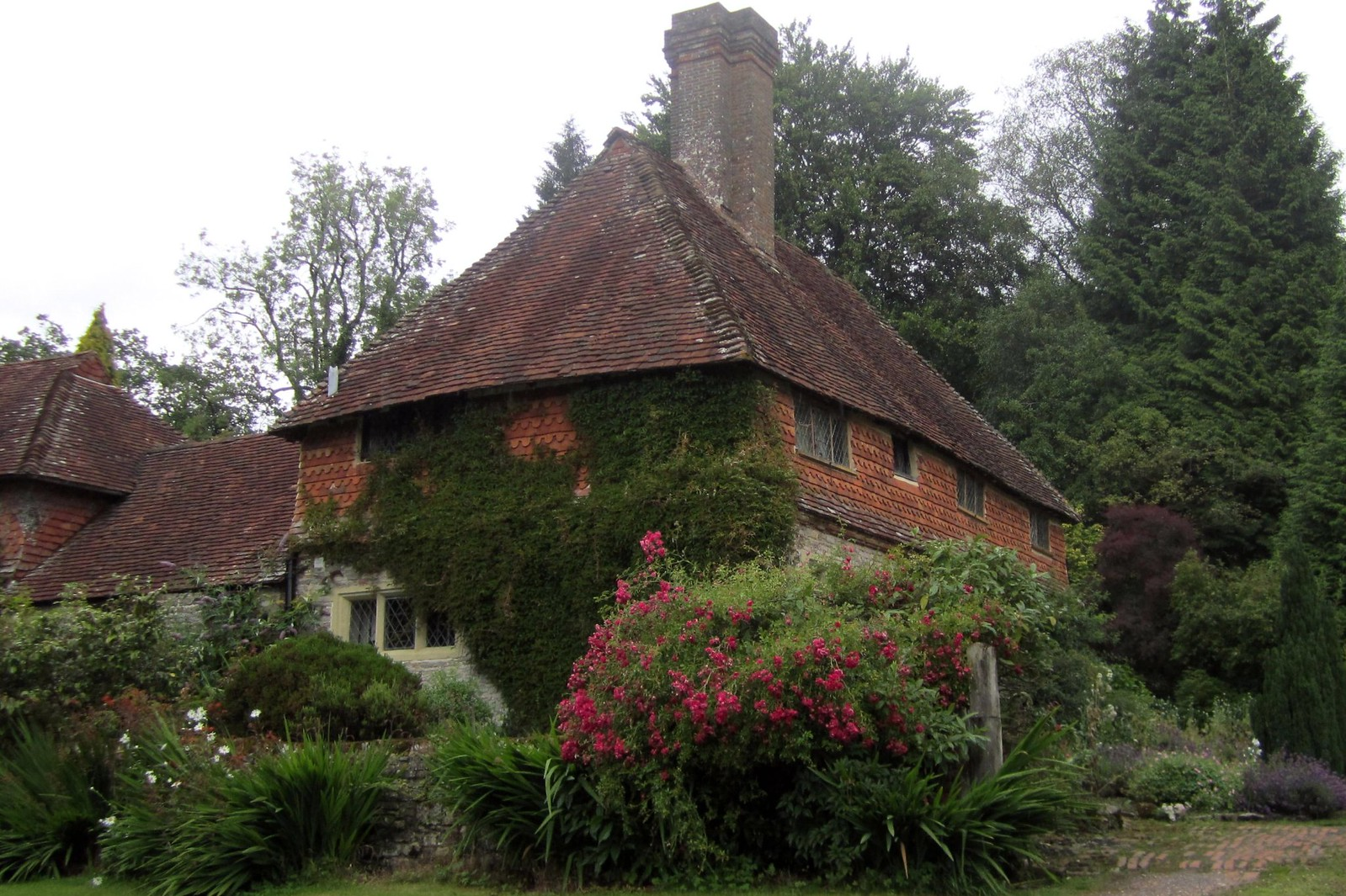 Country House Haslemere Circular Volume 1 Walk22