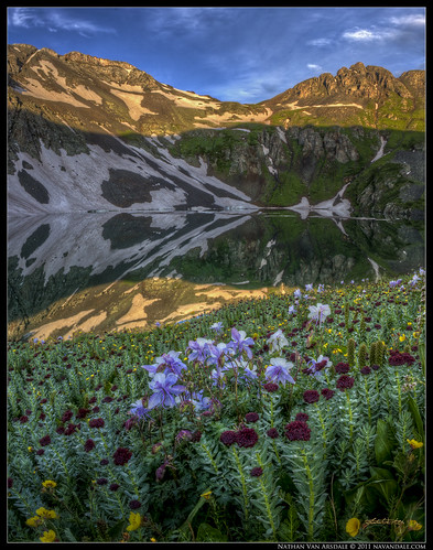 flowers panorama photoshop sunrise colorado silverton clearlake wildflowers hdr highdynamicrange sanjuanmountains ouray columbines coloradowildflowers photomatixpro coloradobluecolumbine canon40d navandale nathanvanarsdale nvaphoto