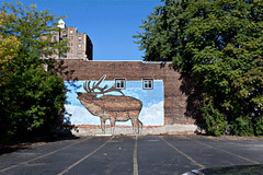 Living Walls (Cleanup) - Albany, NY - 2011, Sep (Animated).gif by sebastien.barre