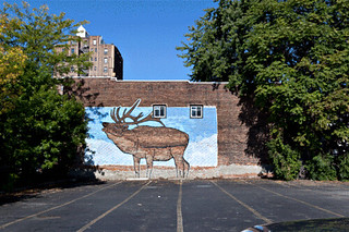 Living Walls (Cleanup) - Albany, NY - 2011, Sep (Animated).gif | by sebastien.barre
