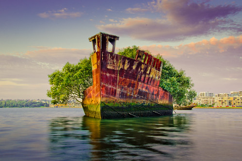 park sunset sea lake water bay nikon ship ss sydney australia shipwreck mm olympic mangroves homebush 18105 ayrfield d7000