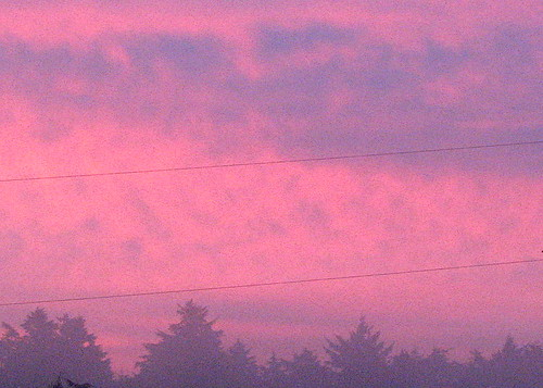 morning red sun mist sunrise oceanshores morningmist mikeyworld