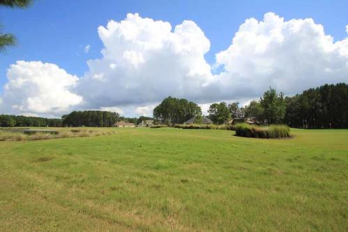 sc golf southcarolina bluffton golfview hamptonhall