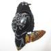 Black bird1IMG_1264