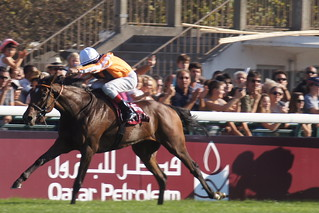 Orange was to be the colour - Danedream wins the 2011 Arc for Germany | by CharlesFred