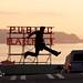 The Best Jump Shot Ever by Samer Farha
