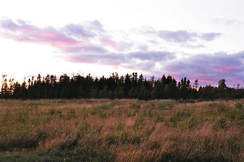 sunset film nikon50mmf18afd nikonf401 presidentschoice400