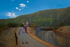 Ratty Takes A Hike