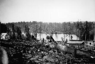 Lake Washington, possibly at Bailey Peninsula, 1903