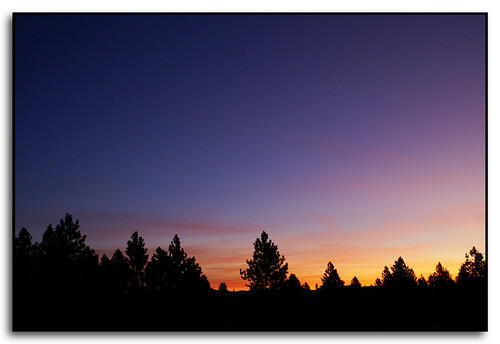 trees colors clouds sunrise washington spokane silhouettes