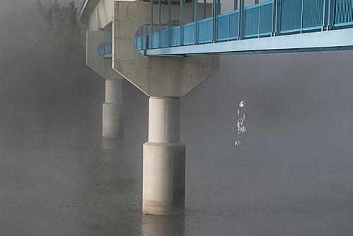 morning urban mist canada water fog sunrise river nikon edmonton walkway alberta transit ets dreamcatcher northsaskatchewanriver menzies senseofplace edmontontransit dudleybmenziesbridge d300s nikond300s afsnikkor1820013556ged