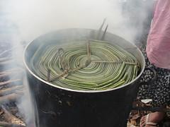 vr, 24/06/2011 - 04:47 - 074. Pandanus haspels worden gekookt, Nomuka, Ha'apai, Tonga